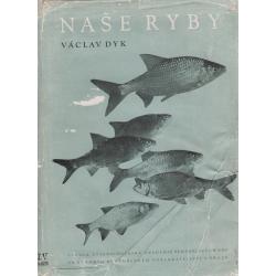 Naše ryby (DYK, Václav)